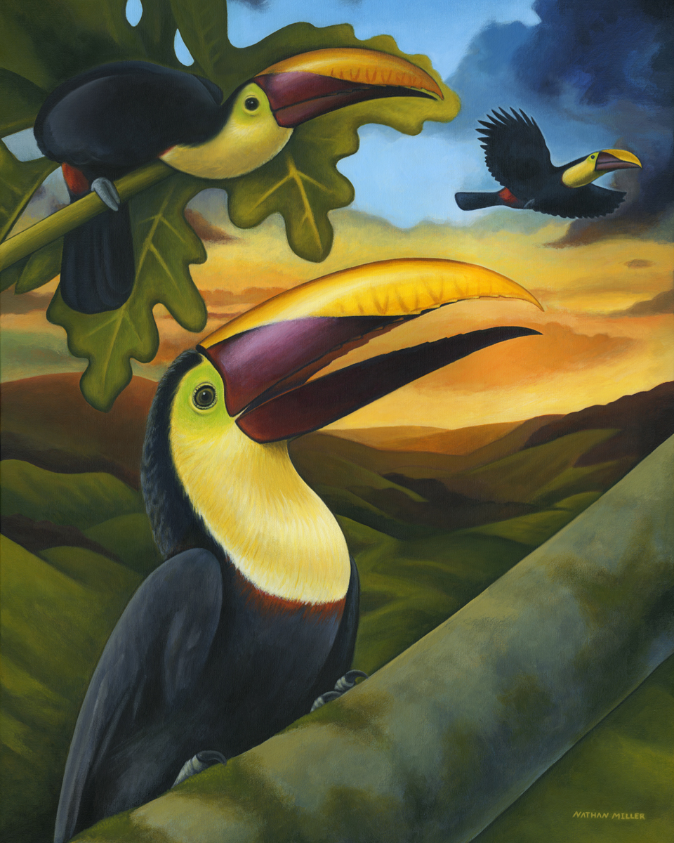 Treetop Toucans - Costa Rican Art by Nathan Miller