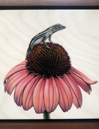 Brown Anole Painting