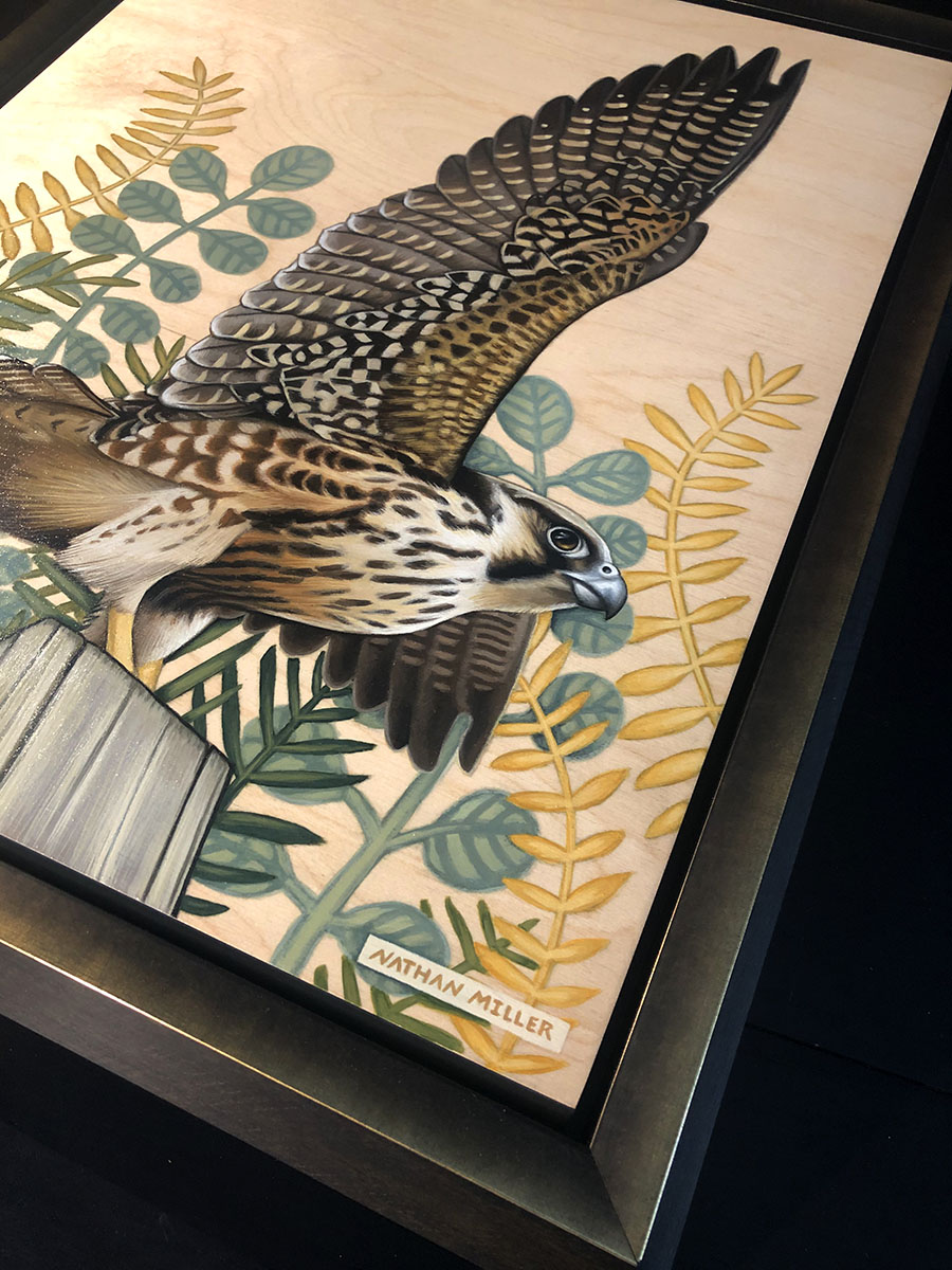 Peregrine Falcon Painting Original