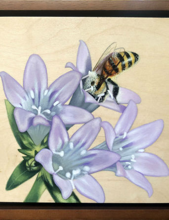 Pollinator Painting